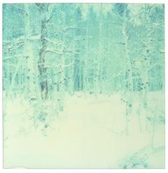 Winter (Wastelands) - Contemporary, Landscape, Polaroid, Analog, 21st Century