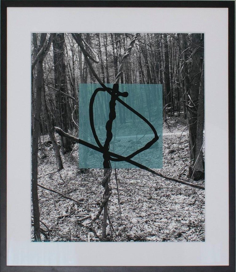 Light Blue Square (Contemporary Landscape w/ Lyrical Vines and Geomteric Shape) - Photograph by Stephanie Blumenthal