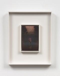 Lady of Shalott, Early Dawn (Mass MoCA #328-B)