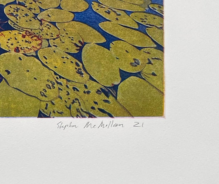 Lily Pads - Contemporary Print by Stephen McMillan