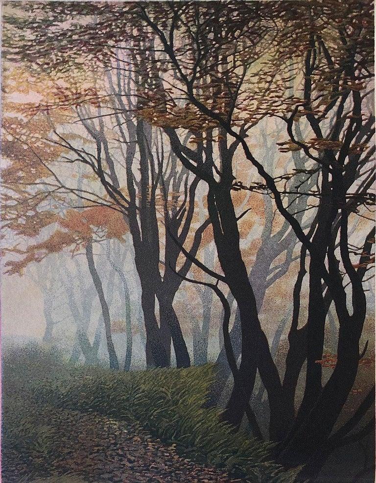 Stephen McMillan Landscape Print - October Colors