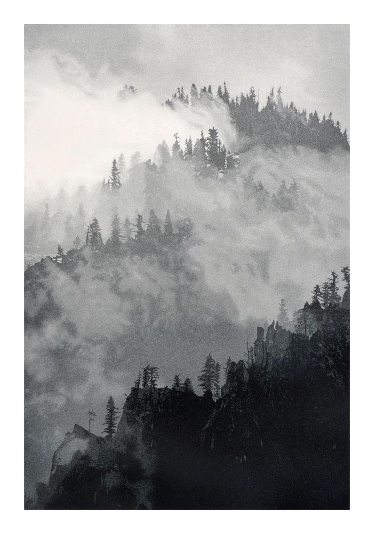 Yosemite Dreams