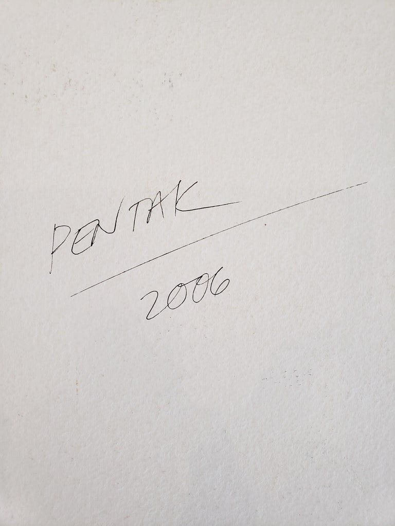 Landscape Painting on Paper by Contemporary Artist Stephen Pentak For Sale 3