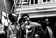 The Black Panthers Portfolio