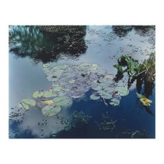 Color Photograph, Gardens at Giverny,  Pond View, 1977, Signed, Stephen Shore