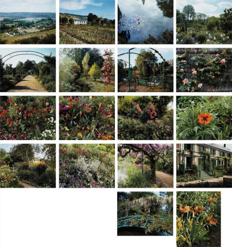 Modern Color Landscape Photograph, Pond View 2, Gardens at Giverny, 1982, Stephen Shore For Sale