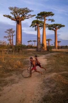 Boys Run With Hoops, Baobab Avenue, Morondava, Madagascar, 2019