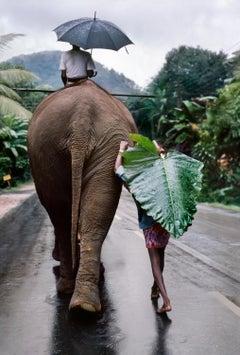 Young Man Walks Behind Elephant, Sri Lanka, 1995
