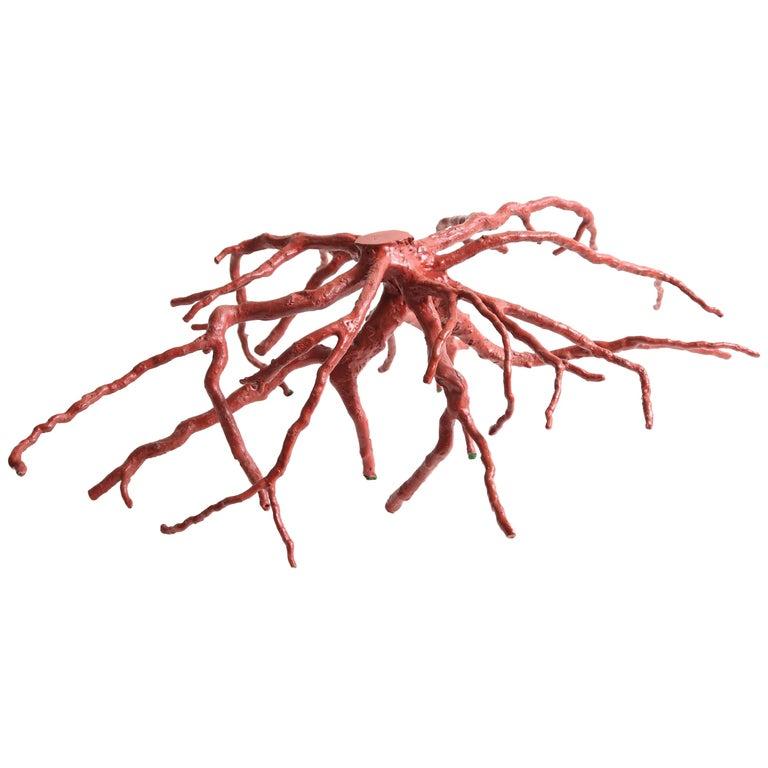 Steve Tobin Trinity Root Sculpture