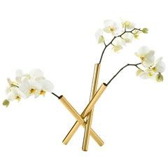 Sticks Flower Pot in Polished Brass by Campana Brothers
