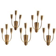 Stilnovo Brass Sputnik Sconces, 1950s