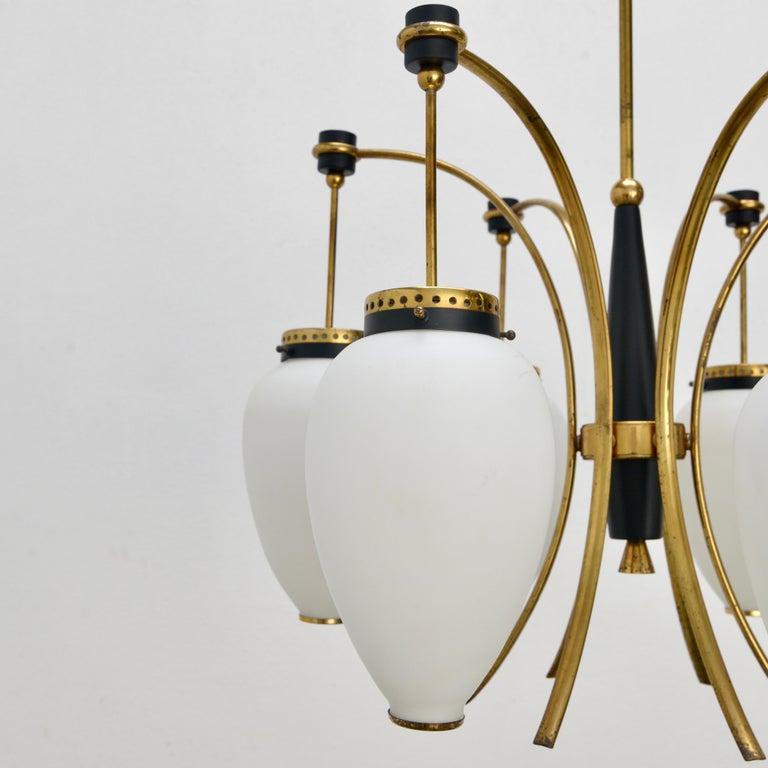 Mid-20th Century Stilnovo Chandelier For Sale