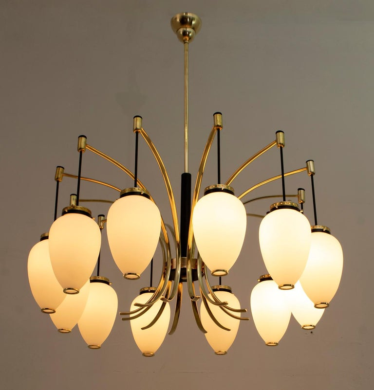 Large 12-light chandelier in polished brass, black lacquered metal and opal glass. Produced by Stilnovo in Italy in the 1950s. The chandelier has been completely restored and polished.  Also available the pair of sconces