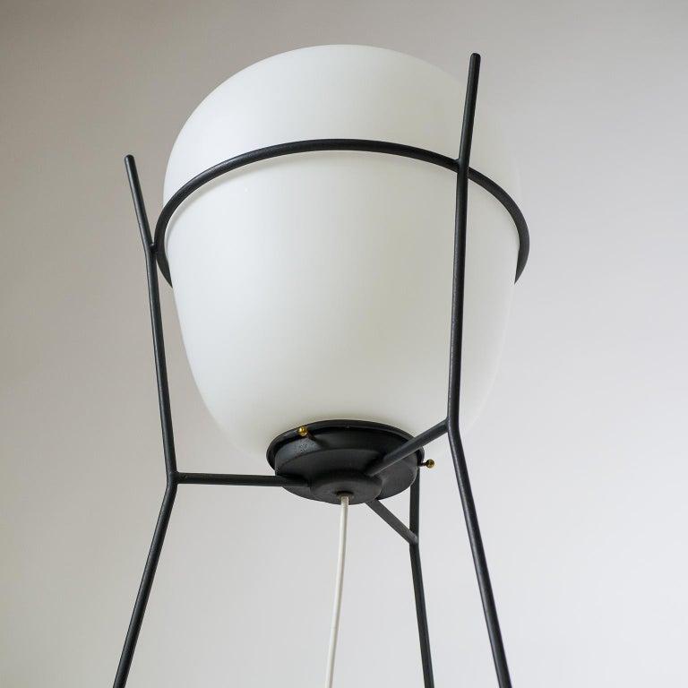 Mid-20th Century Stilnovo Satin Glass Floor Lamp, 1950s For Sale