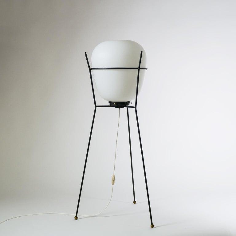 Stilnovo Satin Glass Floor Lamp, 1950s For Sale 6