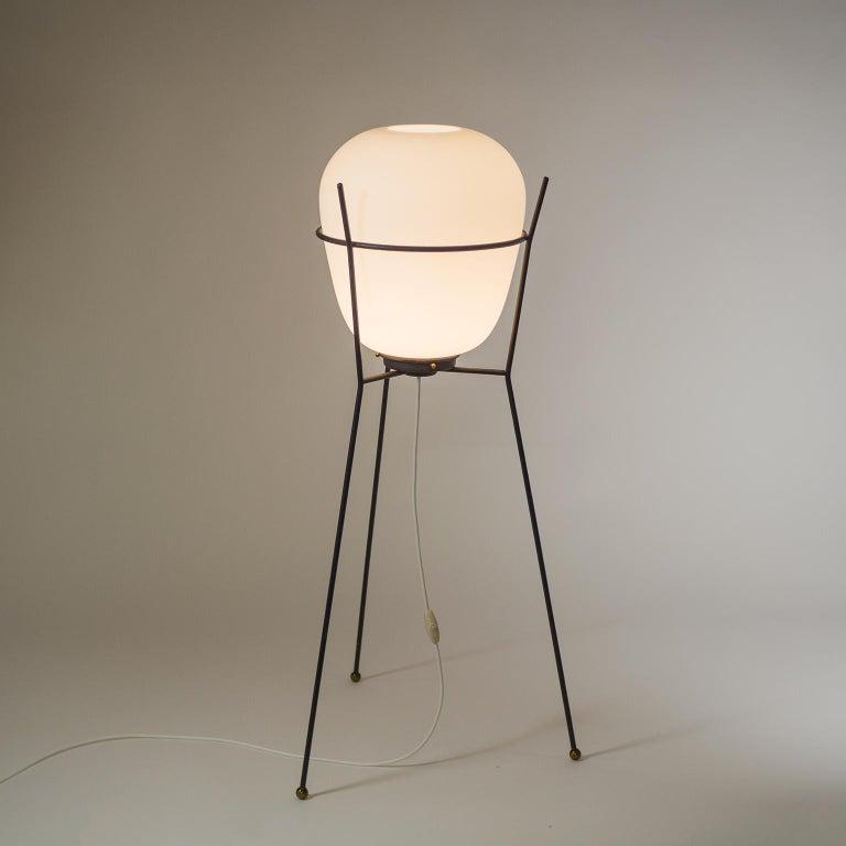 Italian Stilnovo Satin Glass Floor Lamp, 1950s For Sale