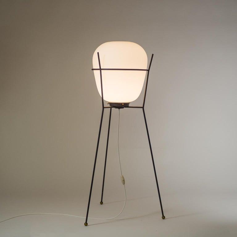 Mid-Century Modern Stilnovo Satin Glass Floor Lamp, 1950s For Sale
