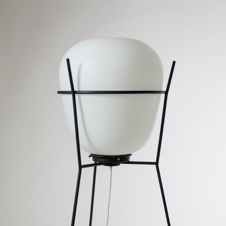 Stilnovo Satin Glass Floor Lamp, 1950s For Sale 5