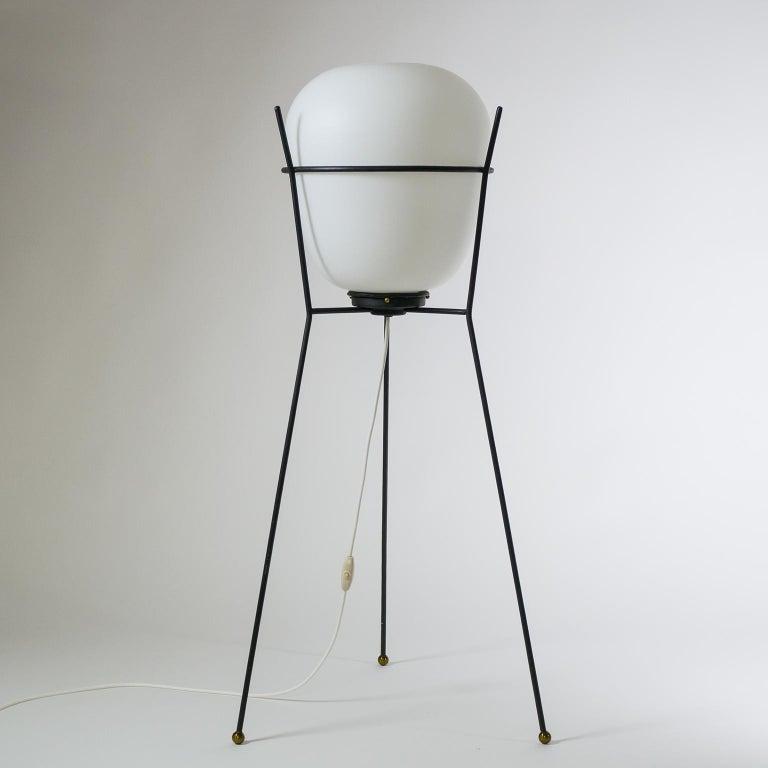 Metal Stilnovo Satin Glass Floor Lamp, 1950s For Sale