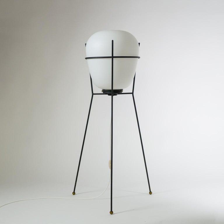 Stilnovo Satin Glass Floor Lamp, 1950s For Sale 3