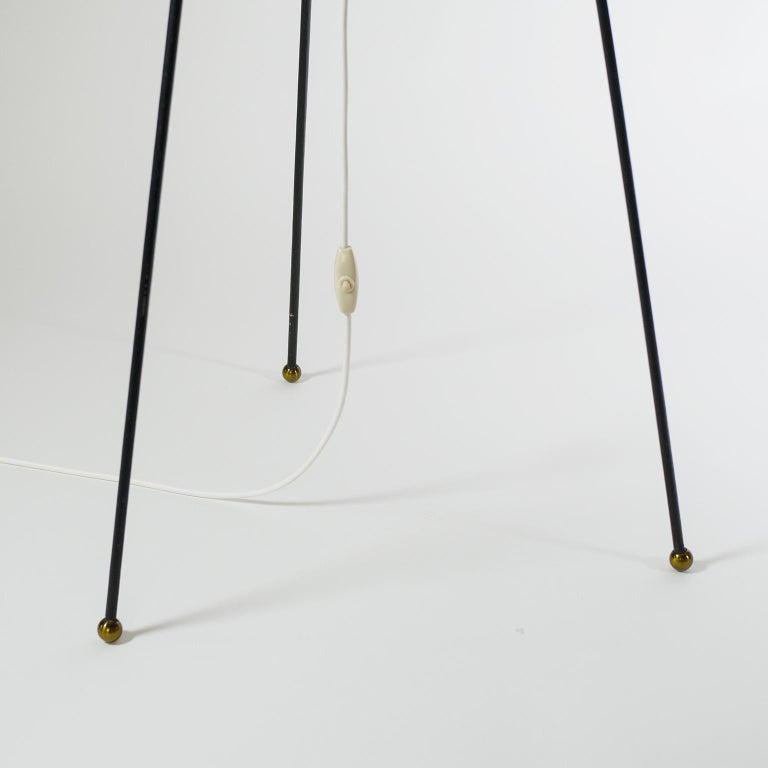 Stilnovo Satin Glass Floor Lamp, 1950s For Sale 2