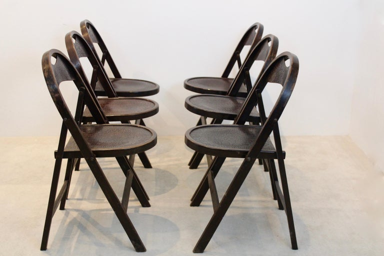 Austrian Stock of Solid Wood Bauhaus Folding Chairs with Unique Croco Woodprint, Thonet For Sale