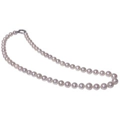 Strand of Cultured Fresh Water Pearl Necklace