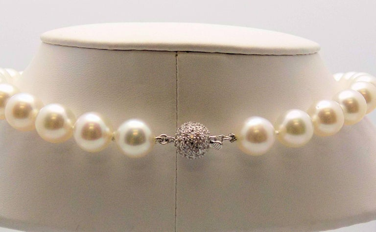 Strand South Sea Cultured Pearls with 18 Karat White Gold and Diamond Pavé Clasp In Excellent Condition For Sale In Dallas, TX