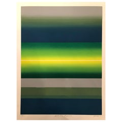 """Striking Litho Signed Numbered and Dated """"Splits And Stripes"""", 1979"""