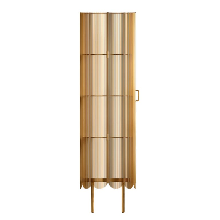 Strings storage cabinet gold by Nika Zupanc is a tall metal cabinet made of multiple steel