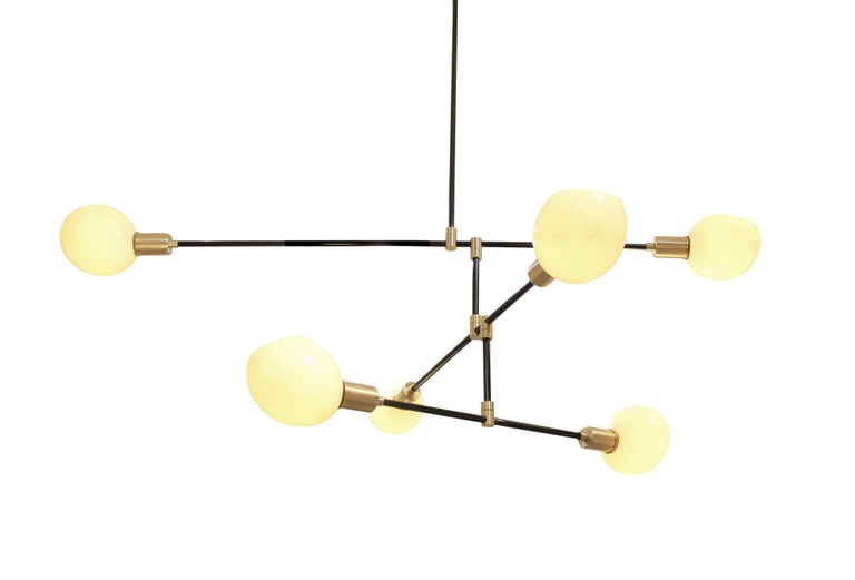 American Struthio Ostrich Egg Chandelier For Sale