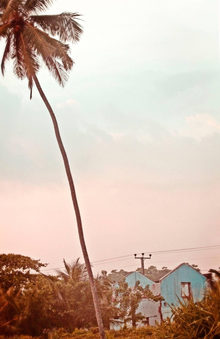 Stuart Möller Color Photograph - 'Palm Blue House' Signed Fine Art limited edition 21st century color photography