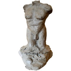 Studio Ceramic Nude Male Torso