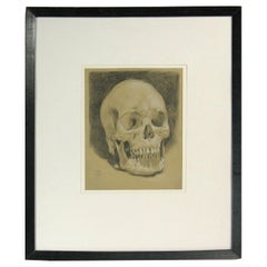 Study of a Human Skull Drawing Dated 1918