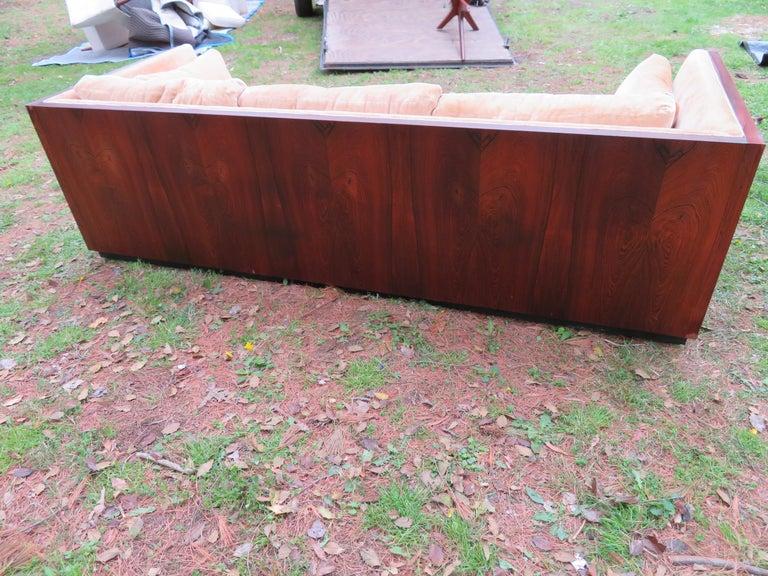 American Stunning Milo Baughman Rosewood Case Sofa Mid-Century Modern For Sale