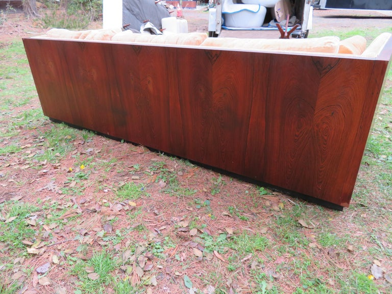 Stunning Milo Baughman Rosewood Case Sofa Mid-Century Modern In Good Condition For Sale In Medford, NJ