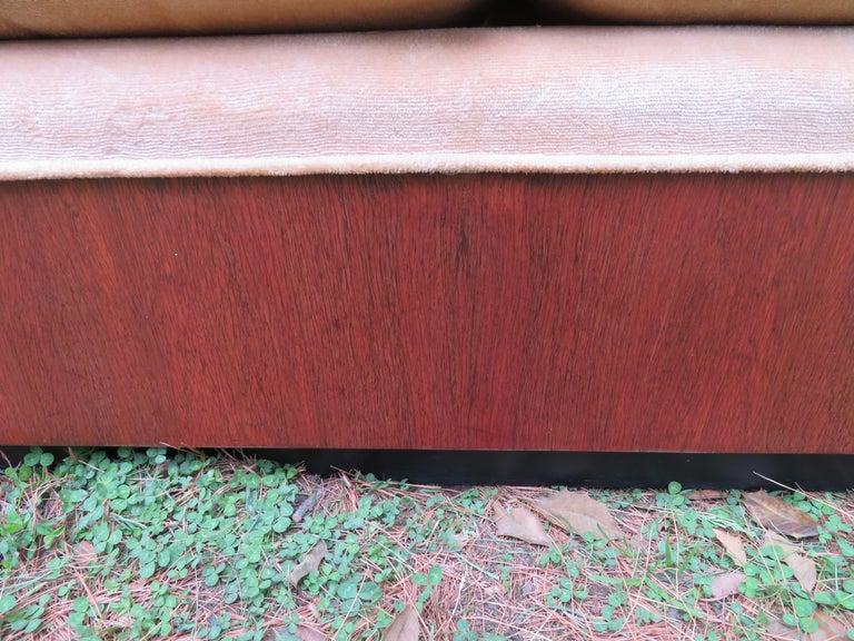Stunning Milo Baughman Rosewood Case Sofa Mid-Century Modern For Sale 3