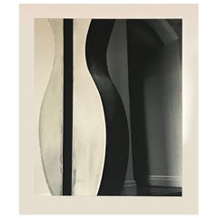 Stunning Modernist, Photograph NYC Artist Tracy Marciano