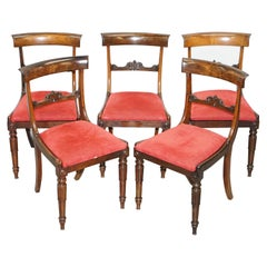 Stunning Suite of Five William IV circa 1830 Hardwood Dining Chairs Sublime!!!!!