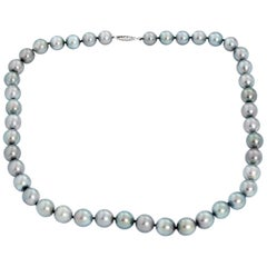Stunning Tahitian Pearl Necklace with White Gold Clasp