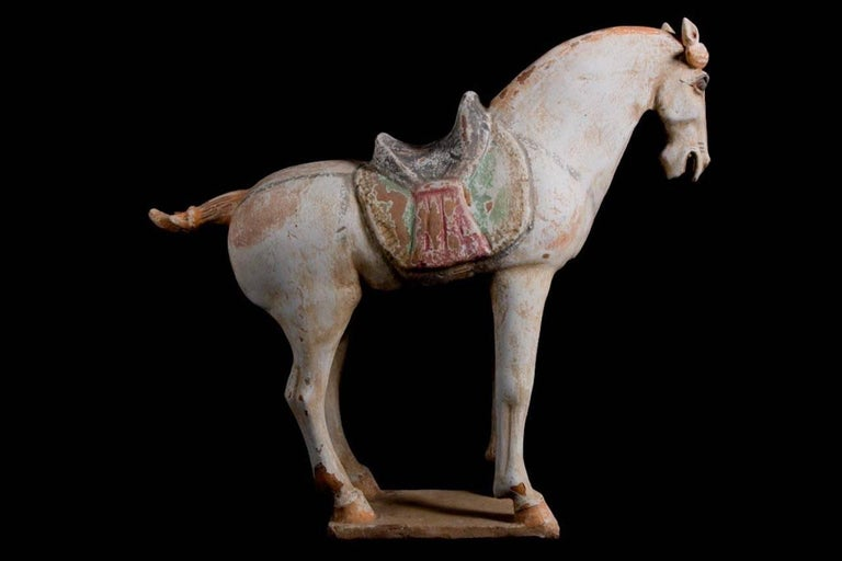Stunning Terracotta Standing Horse, Tang Dynasty, China '618-907 AD', TL Test For Sale 2