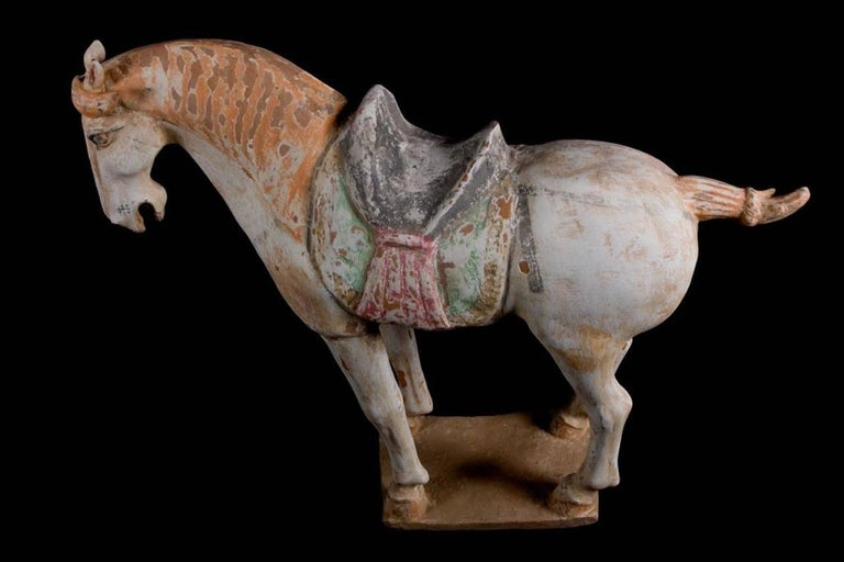 Stunning Terracotta Standing Horse, Tang Dynasty, China '618-907 AD', TL Test For Sale 4