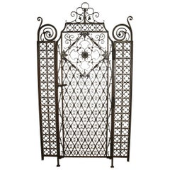 Sublime 19th Century French Iron Door Gate