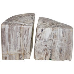 Sublime Pair of 180 Million Year Old Pretrified Fossil Wood Bookends Door Stops