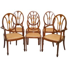 Sublime Suite of 6 Sheraton Revival George Hepplewhite Dining Chairs Part Suite