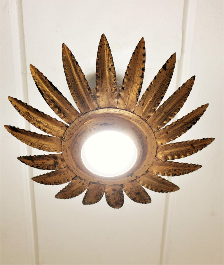 Sunburst Flower Light Fixture or Pendant in Gilt Metal 5