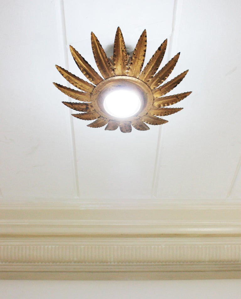 Wrought Iron Sunburst Flower Light Fixture or Pendant in Gilt Metal