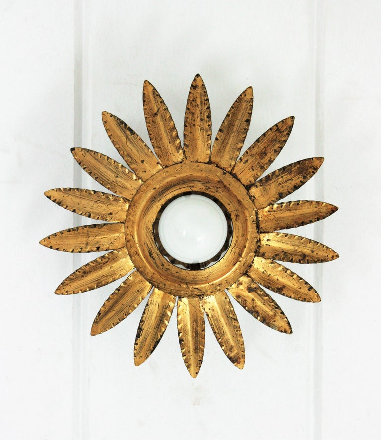 Sunburst Flower Light Fixture or Pendant in Gilt Metal 2
