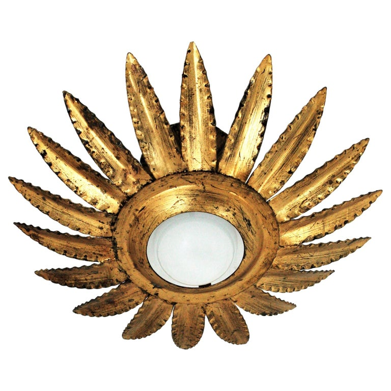 Sunburst Flower Light Fixture or Pendant in Gilt Metal