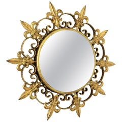 Sunburst Small Scale Gilt Metal Mirror with Fleur-de-Lys Design